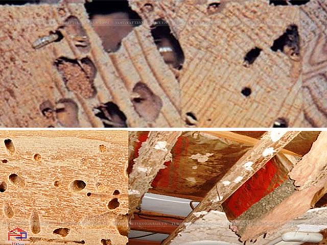 Mối xong đồ nội thất gỗ công nghiệp